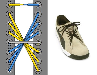 Галактика шнуровка - Внешний вид, пример